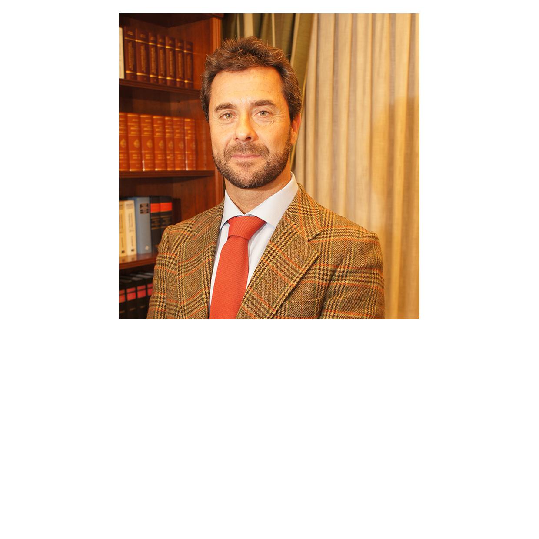 Alfonso Garcia Ruiz
